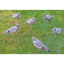 6 x Nitehawk Pigeon Decoy - FULL BODY FLOCKED